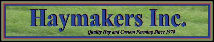 Haymakers Inc